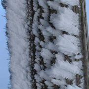 2. Februar 2008, Schauinsland Raureif