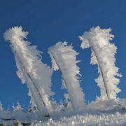 4. Januar 2010, Schauinsland Halde